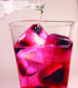 Lemon and Berry Fruit Infused Ice Cubes