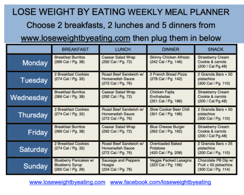 1200 Calorie Meal Plan For Fast Weight Loss By Audrey Johns